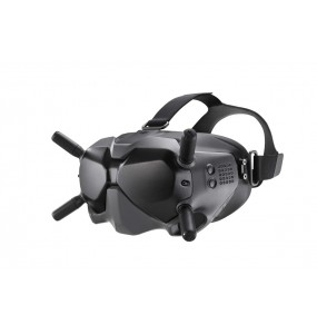 DJI FPV - Goggles V2
